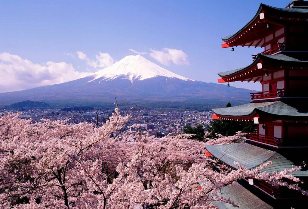 Cómo son las mudanzas en Japón